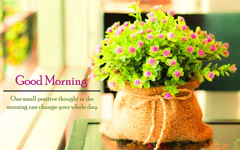 new-good-morning-quotes