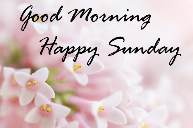 Sunday Good Morning Photo Pic Download