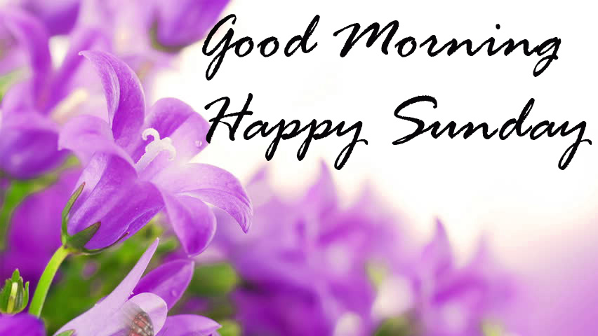 Sunday Good Morning Photo Pictures Pics HD