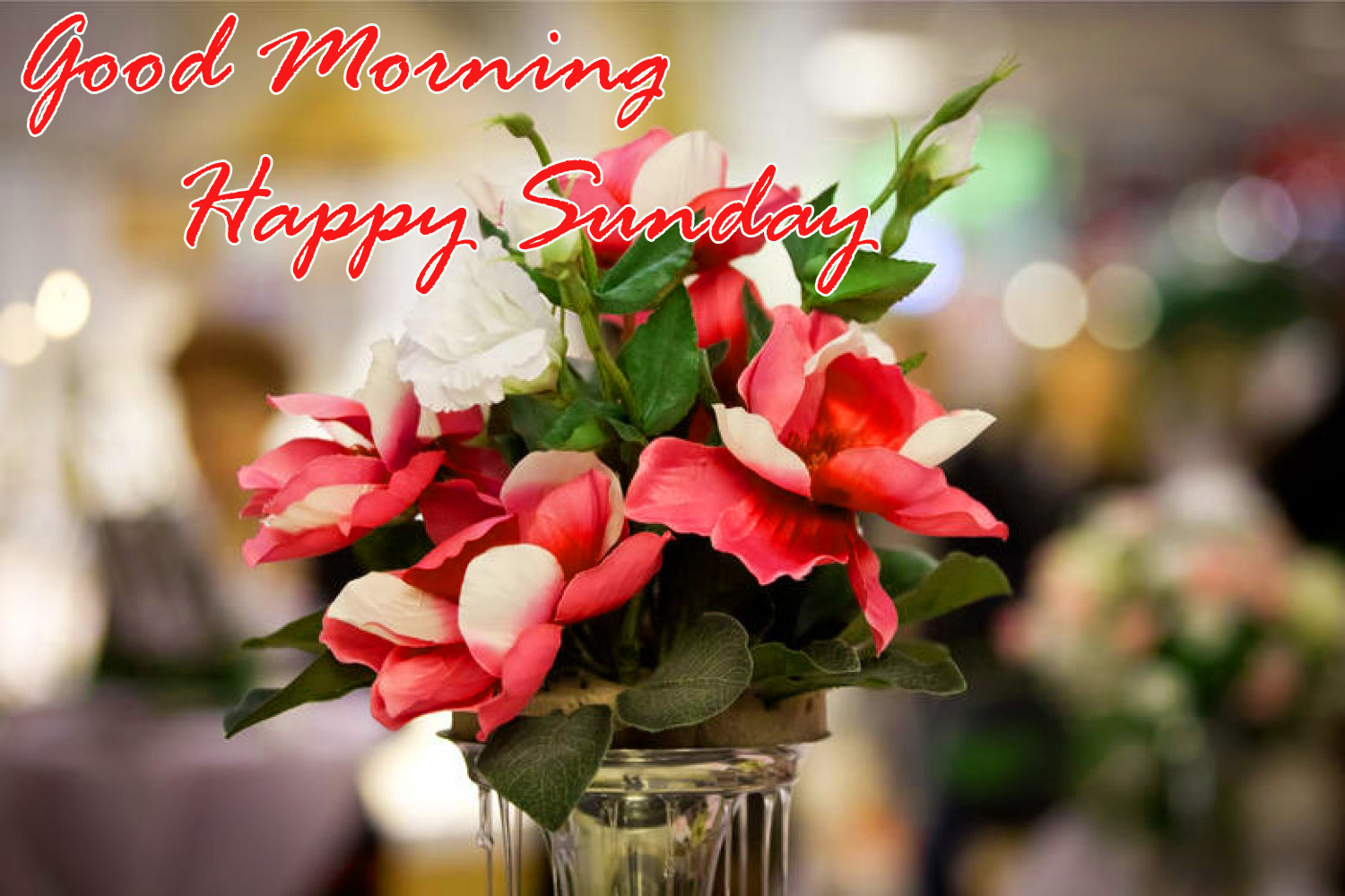 Sunday Good Morning Wallpaper Pics Download