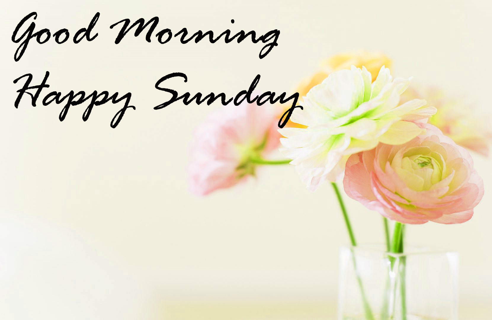 Sunday Good Morning Images Wallpaper Pics Download