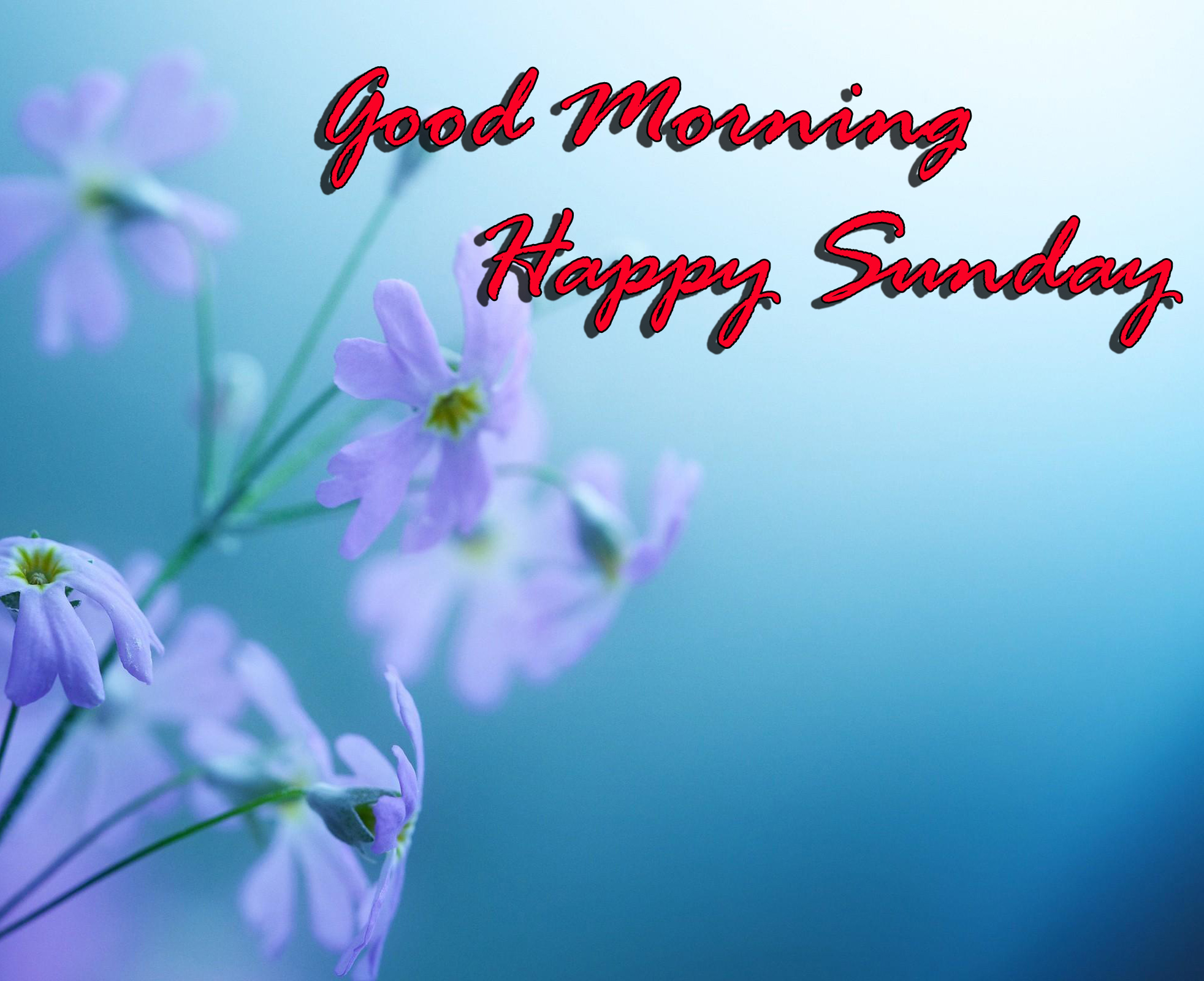 Sunday Good Morning Images photo Pics Download