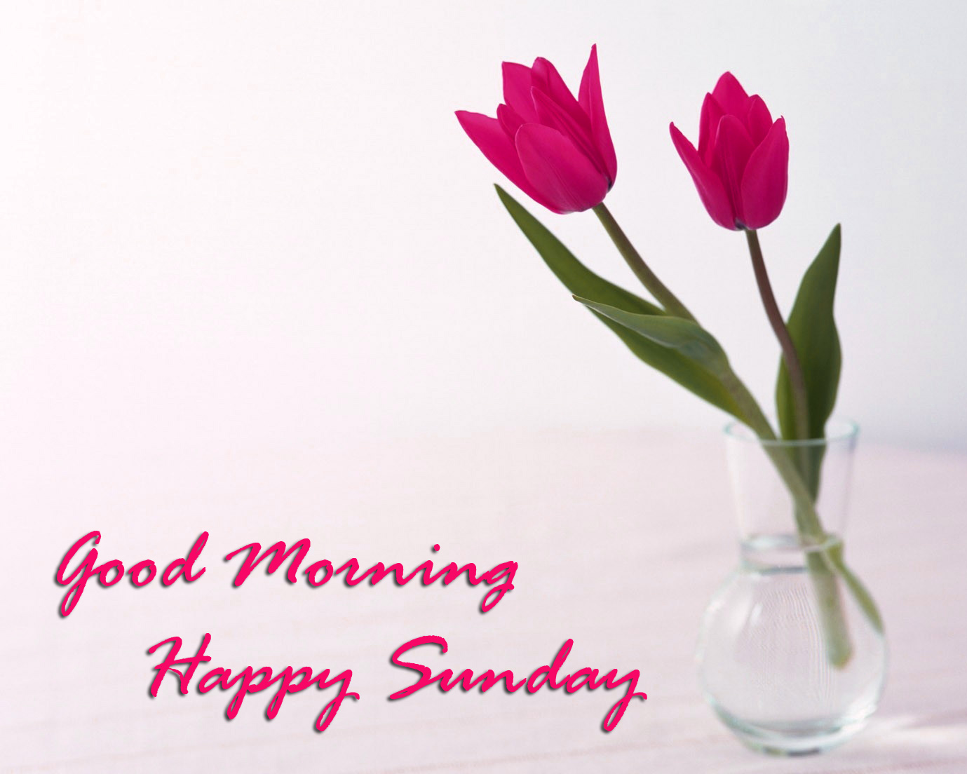 Sunday Good Morning Images Wallpaper Pics Download for Facebook