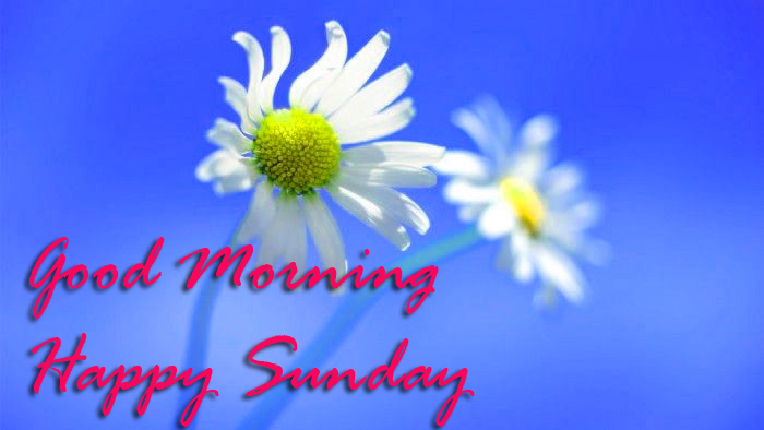 Sunday Good Morning Wallpaper Pictures Free Download