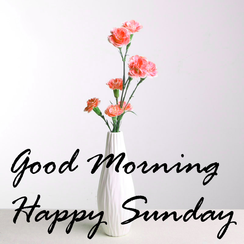 Sunday Good Morning Images Wallpaper pics Free