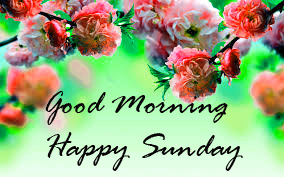 Sunday Good Morning Images Wallpaper Pics Free HD