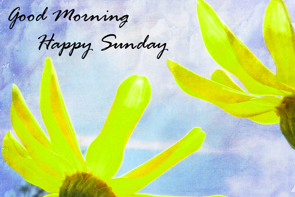 Sunday Good Morning Images Wallpaper for Facebook