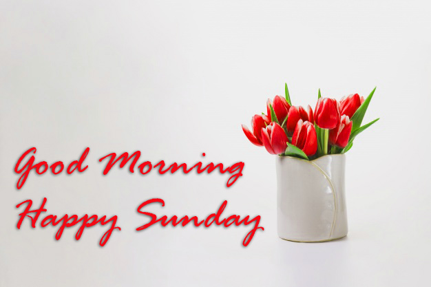 Sunday Good Morning Images Photo Pics HD Download