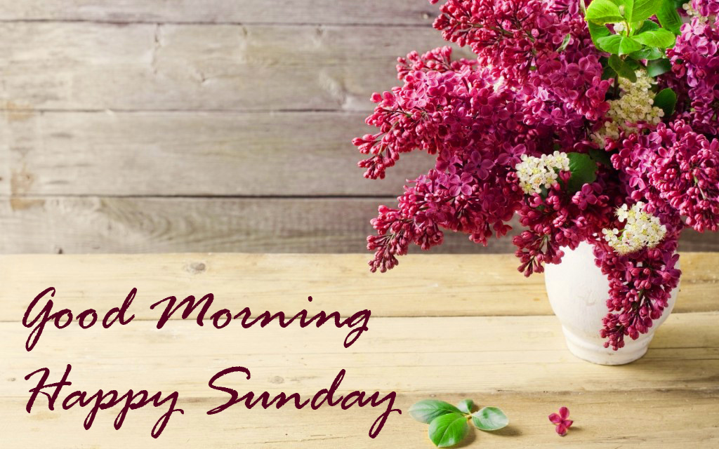 Sunday Good Morning Images Wallpaper Pics Free Download