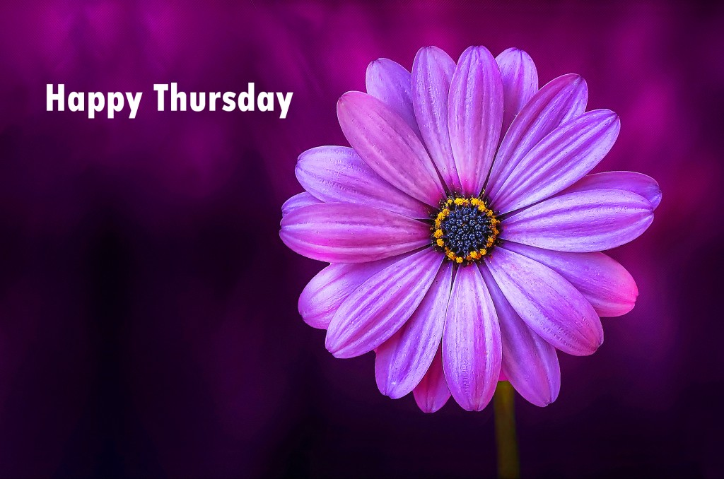 Good Morning Thursday Images Wallpaper Photo Pictures Download for Whatsaap