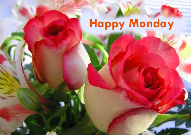 Images-of-flowers-happy-mon