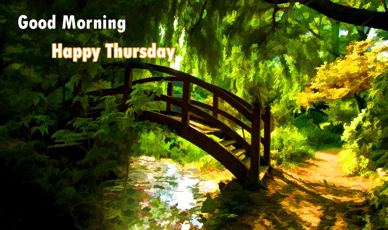 311+ Good Morning Thursday Images Wishes Greetings HD Download