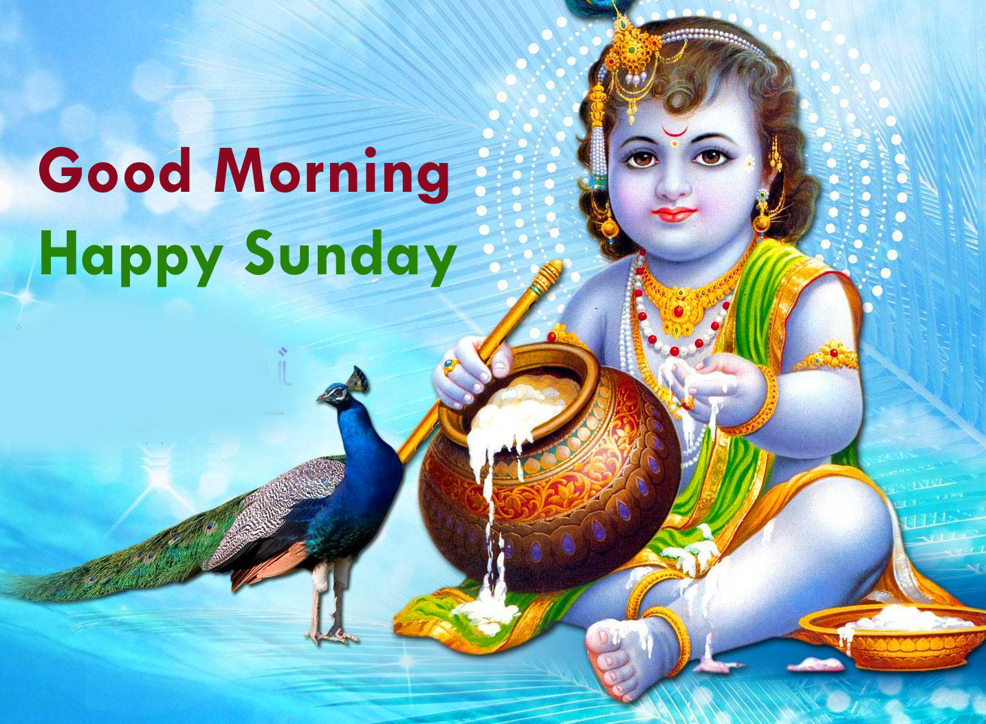 Good Morning Sunday Photos Download : Happy sunday images quotes good morning greetings