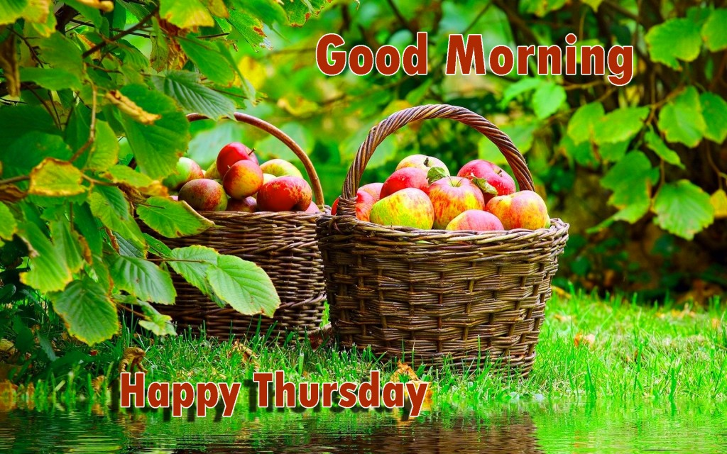 Good Morning Thursday Images Wallpaper Pictures HD Download