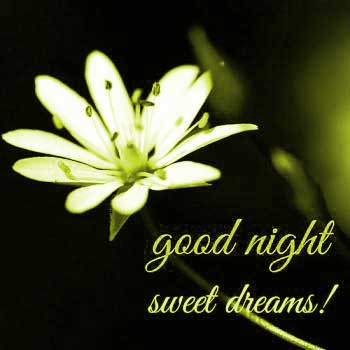good-night-images-download