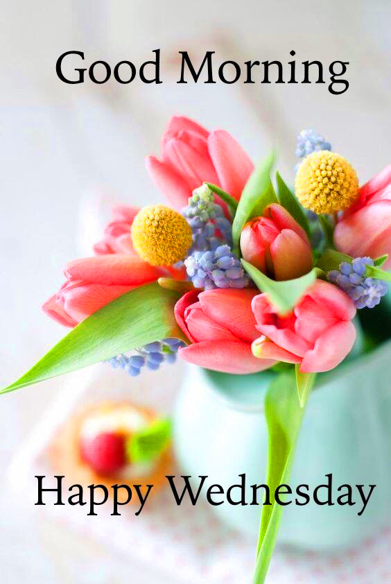 Good Morning Wednesday Images Pics Photo HD
