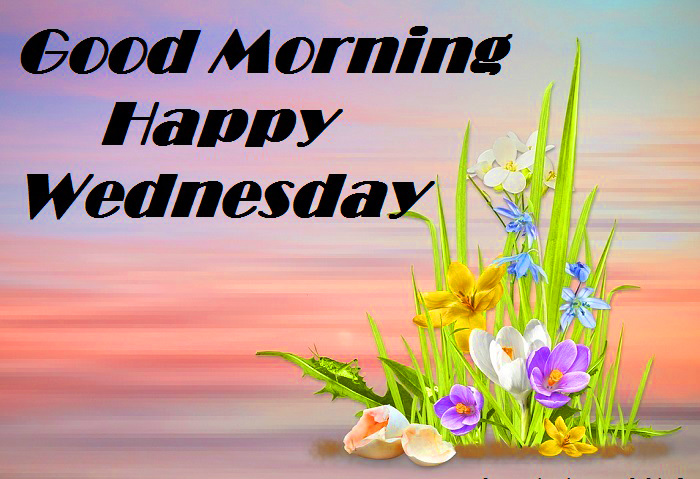 Good Morning Wednesday Images Wallpaper Pictures