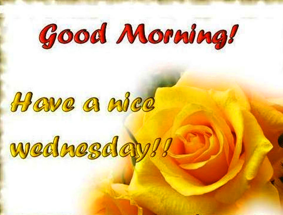Good Morning Wednesday Images  Pics Download