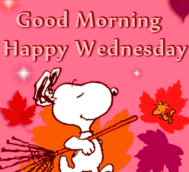 Good Morning Wednesday Images Wallpaper Pics Download
