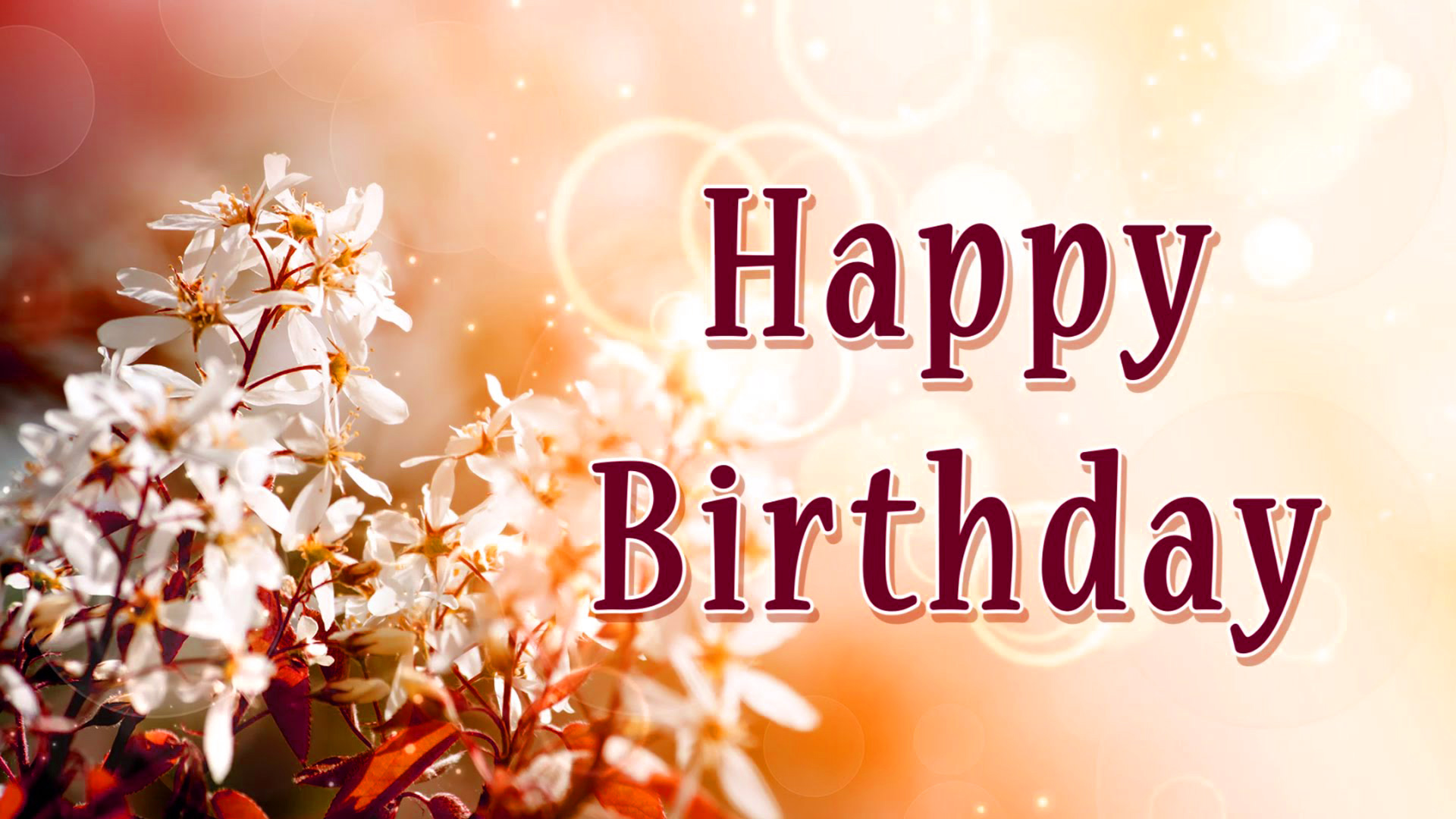 Happy Birthday  Images Photo Pics Free Download