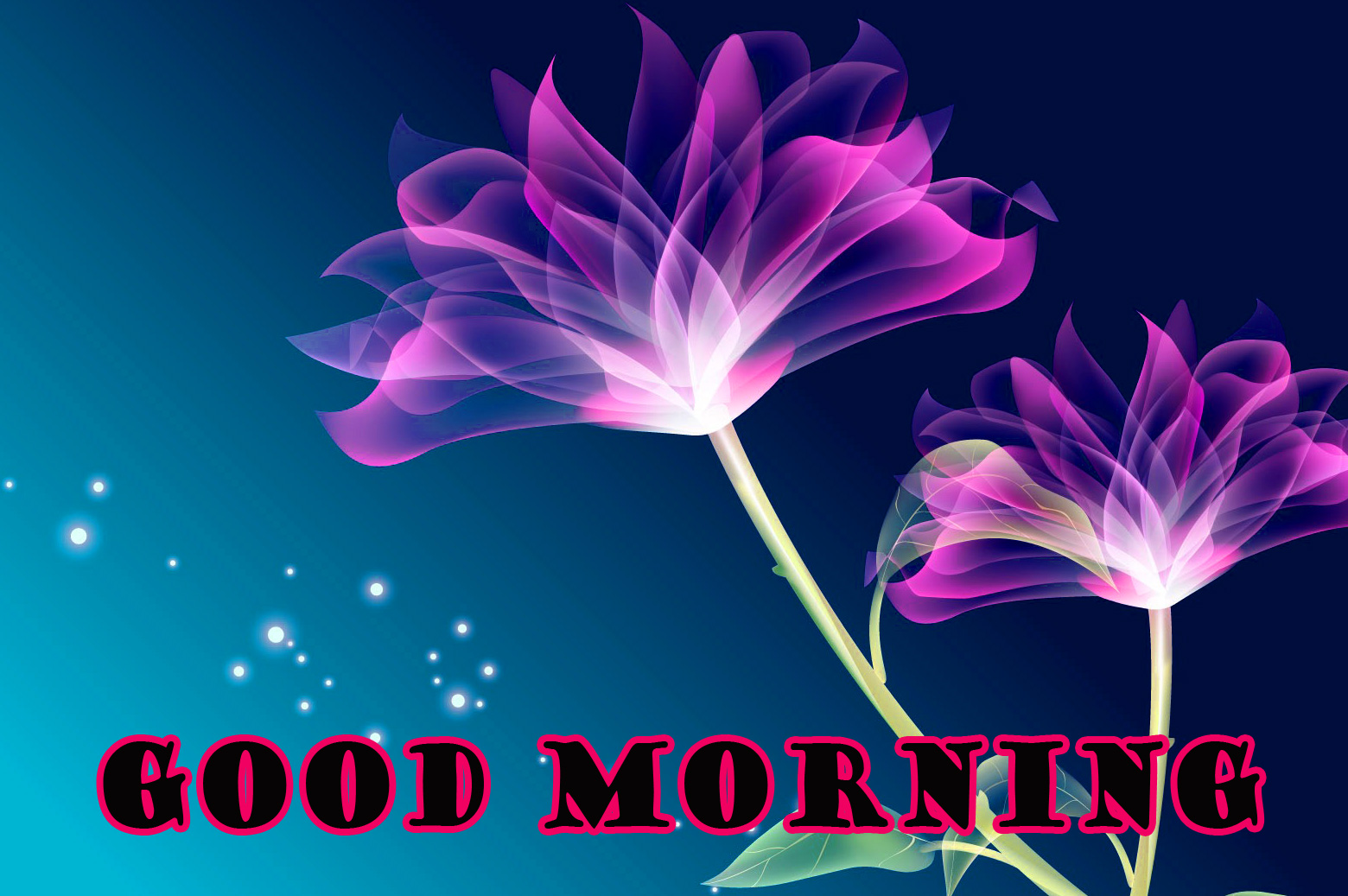 Good Morning Flowers Wallpaper Pictures Images Download