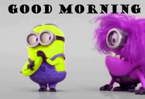 Funny Good Morning Images Photo Wallpaper HD Download