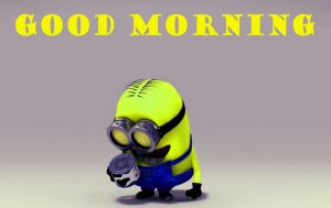 Funny Good Morning Wallpaper Pictures Images Download In HD