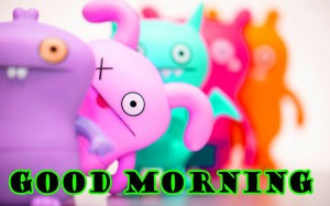 Funny Good Morning Wallpaper Pictures Images Free Download