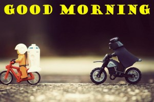 Funny Good Morning Wallpaper Pictures Images HD Download