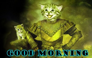 Funny Good Morning Photo Wallpaper Pictures Images Free Download
