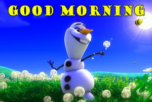 Funny Good Morning Photo Wallpaper Pictures Free HD