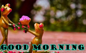 Funny Good Morning Wallpaper Pictures Images Download