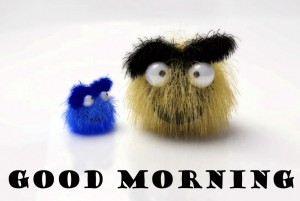 Funny Good Morning Photo Images Pictures Download