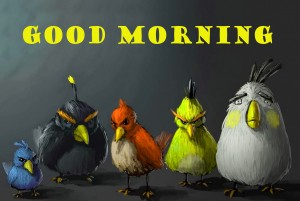 Funny Good Morning Photo Wallpaper Pictures For Whatsapp