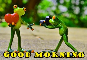Funny Good Morning Photo Wallpaper Pictures HD