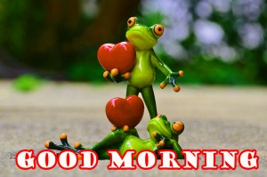 Funny Good Morning Photo Wallpaper Pictures Free Download