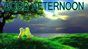 Good Afternoon Pictures Wallpaper Pics Downlaod