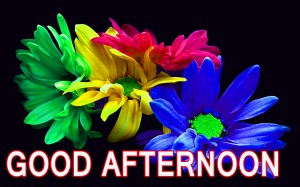 Good Afternoon Wallpaper Pictures Images Photo Download
