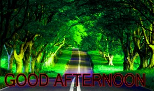 Good Afternoon Pictures Wallpaper Pics Photo HD