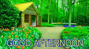Good Afternoon Pictures Wallpaper Pics Photo Free Download