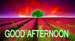 Good Afternoon Pictures Wallpaper Pics Free HD Download