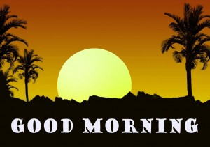 Good Morning Pictures Wallpaper Pics Free Download