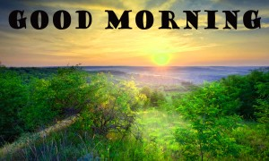 Good Morning Pictures Wallpaper Pics HD
