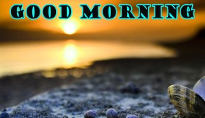 Good Morning Wallpaper Pictures Images Free HD Download