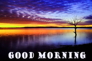 Good Morning Wallpaper Pictures Images Download