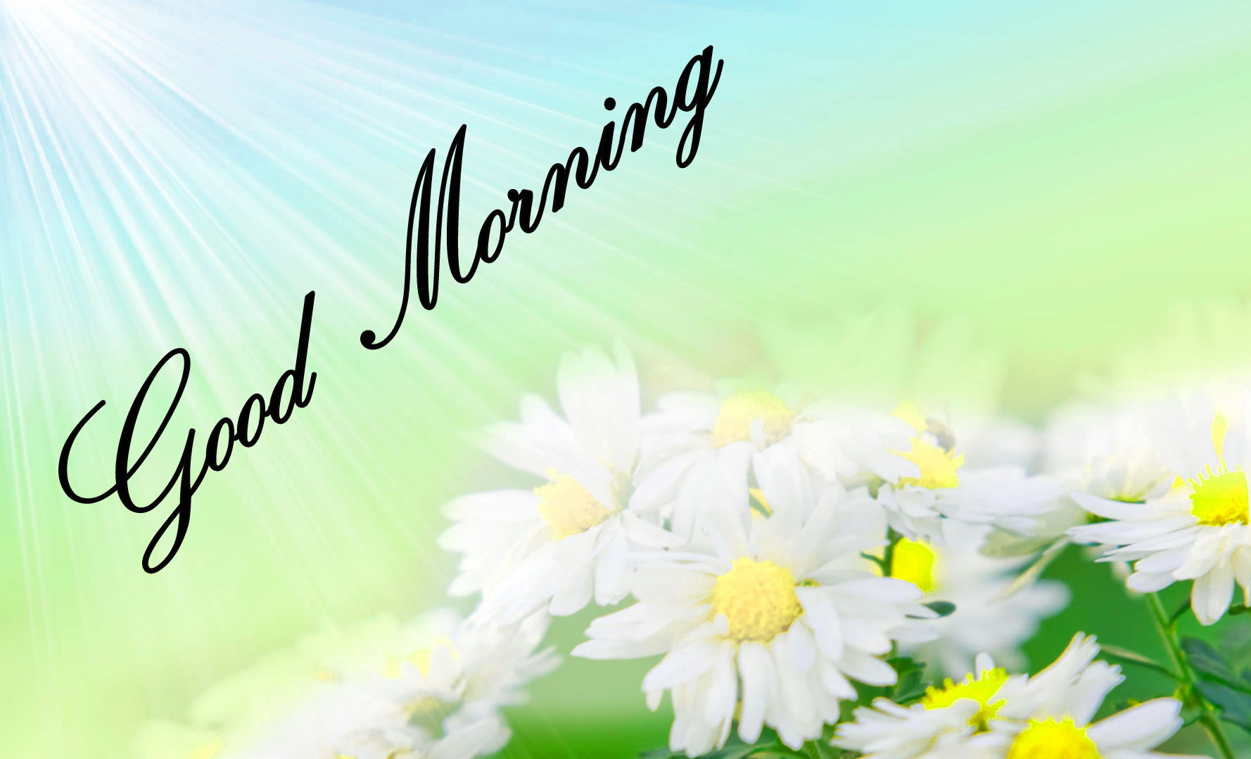 Good Morning Images Wallpaper Photo Pictures Pics Download for Whatsapp