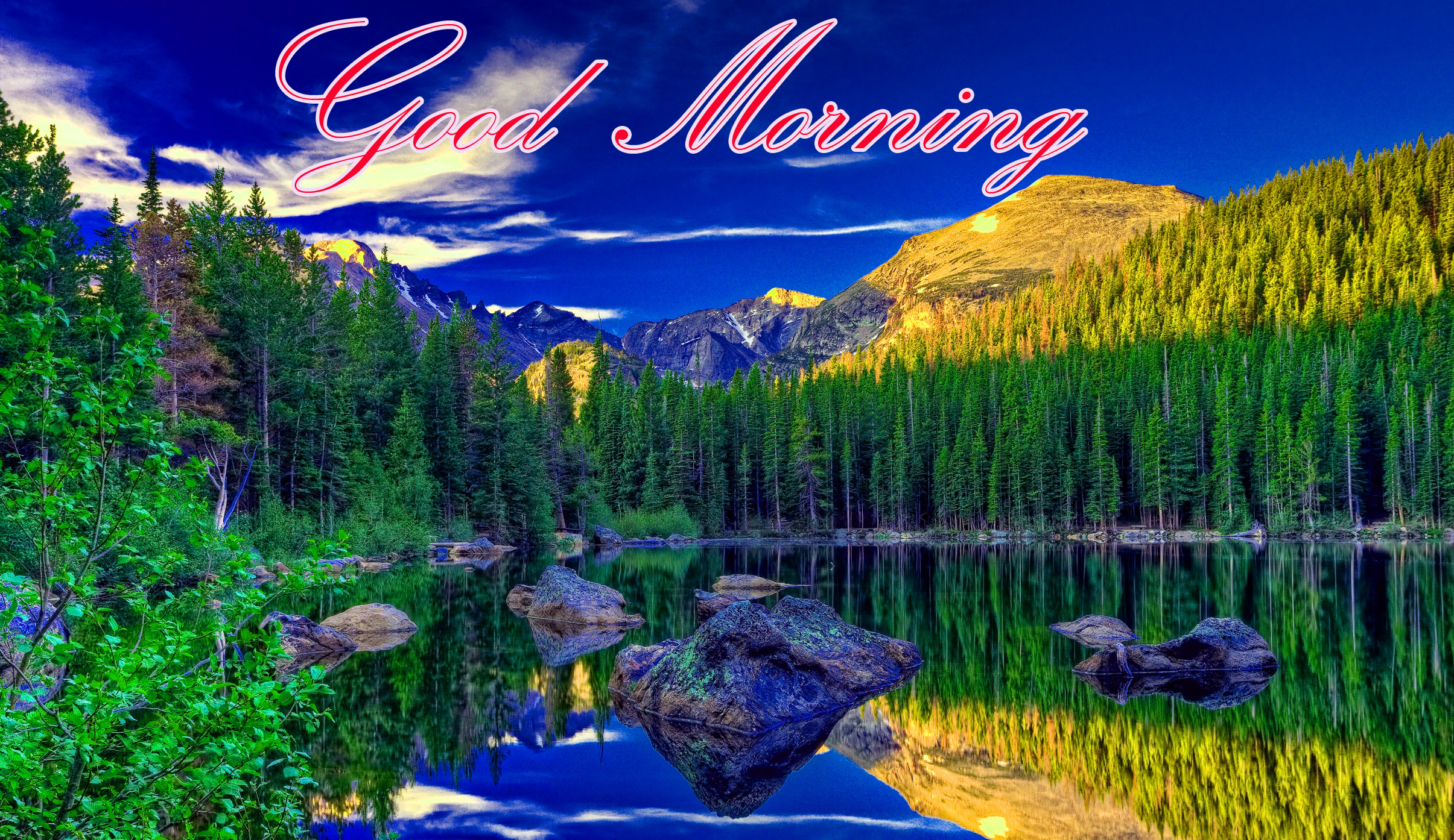 Good Morning Images Wallpaper photo Pictures Pics Download With Nature