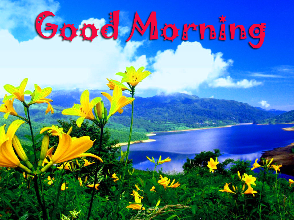 Good Morning Images Wallpaper photo Pics Download
