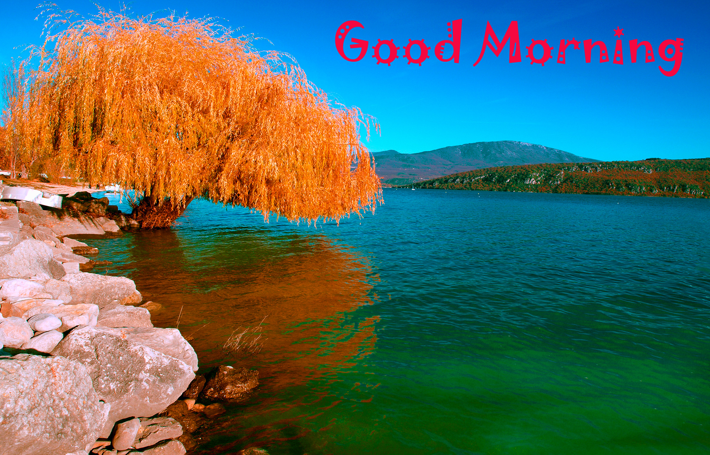 Good Morning Images Wallpaper Pics Download With Beautiful nature