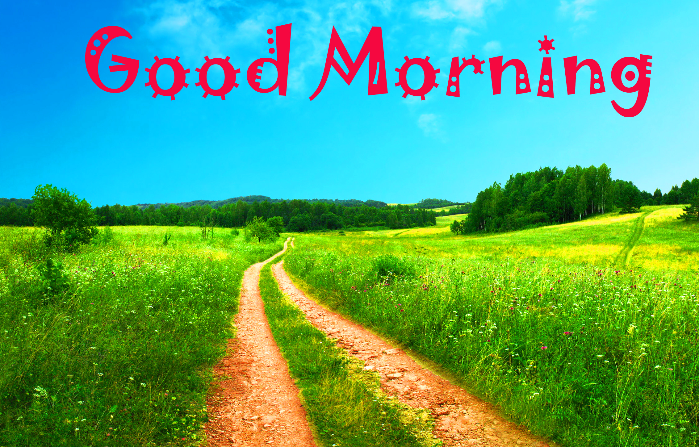 Good Morning Images Wallpaper photo Pictures Free Download